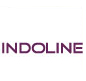 Indoline Industries Pvt ltd
